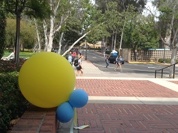 UCLA6A20.jpg